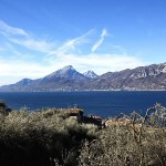Olivenhaine und Seeblick am Gardasee